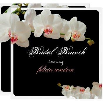 pixdezines orchids/bridal brunch/diy background invitation