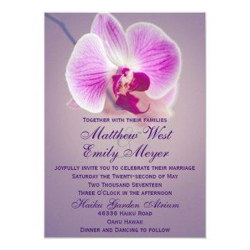 purple radiant orchid wedding invitation