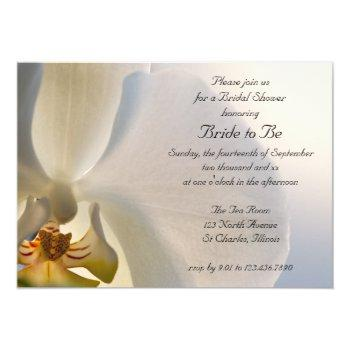 white orchid elegance bridal shower invitation